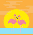 two pink flamingo standing on one leg ocean see vector image