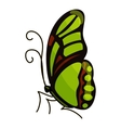 Green butterfly icon cartoon style vector image