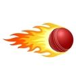 Flaming cricket ball vector image vector image