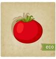 tomato eco background vector image