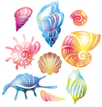 colored seashell vector image vector image