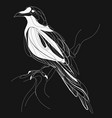 a crow sitting on a branch stylized magpie on a vector image