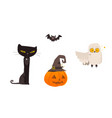 halloween objects - cat owl bat pumpkin lantern vector image