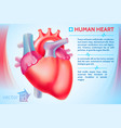 medical organ poster vector image