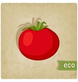 tomato eco background vector image