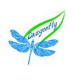 dragonflyLogo1 vector image