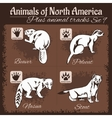 North America animals and animal tracks vector image vector image