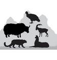 mountain area animals vector image
