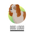 spaniel dog logo on white background vector image