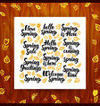 spring greeting calligraphy vector image