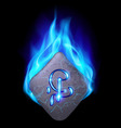 Runic stone vector image vector image
