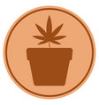 Cannabis pot bronze coin vector image