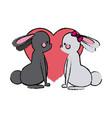 couple rabbit heart lovely design vector image