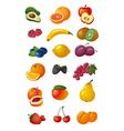 various fresh fruits vector image vector image