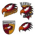 Professional sports logo hawks vector image