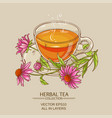 cup of echinacea tea vector image