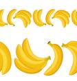 seamless border of banana vector image