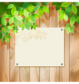 Green leaves on a wood texture background vector image
