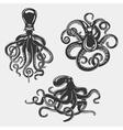 Black octopus or underwater swimming mollusk vector image