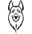 dog head vector image