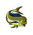 Dorado Dolphin Fsh Mahi-Mahi vector image