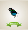 realistic bluewing element of vector image