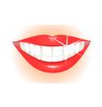healthy teeth vector image