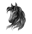 Horse head watercolor sketch portrait vector image vector image
