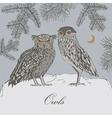 Owls in forest vector image