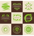 Eco Organic Labels and Tags Set vector image