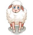 A white sheep vector image