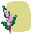 Calla lilies border cardflower card vector image