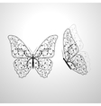 Beautiful butterflies with floral pattern vector image