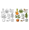 set marijuana vintage black and color vector image