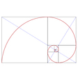 Fibonacci golden ratio vector image