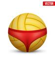 Beach volleyball symbol vector image