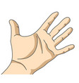 palm hand isolate on white vector image