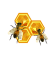 honeycomb design with origami bees vector image