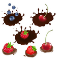 berry in chocolate vector image