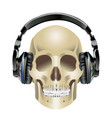 human skull and headphones vector image