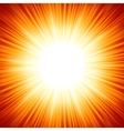 sun flare vector image vector image