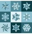 Blue White SnowFlake Shape Elements vector image
