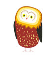 cute owl with tick plumage and tiny beak vector image