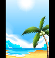 A beach with a coconut tree vector image