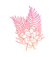 flower tropical plant leaves exotic nature vector image