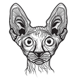 Cat head animal vector image
