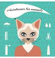 Hairdresser for animals vector image
