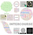 INTERCOURSE vector image vector image