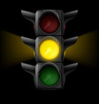 Traffic light with yellow on vector image