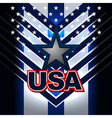 usa nation flag backgrounds vector image